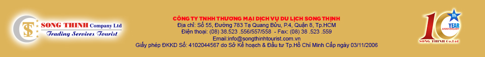 ve-may-bay-song-thinh
